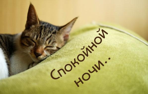Спокойной ночи..