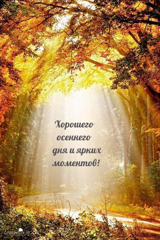 Хорошего осеннего дня и ярких моментов!