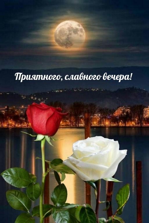 Приятного, славного вечера!.