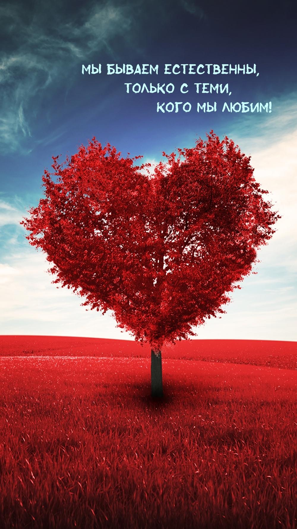 Мы бываем естественны только с теми, кого мы любим!.