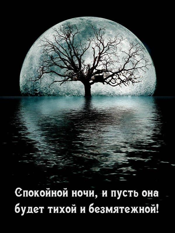 Спокойной ночи, и пусть она будет тихой ибезмятежной!