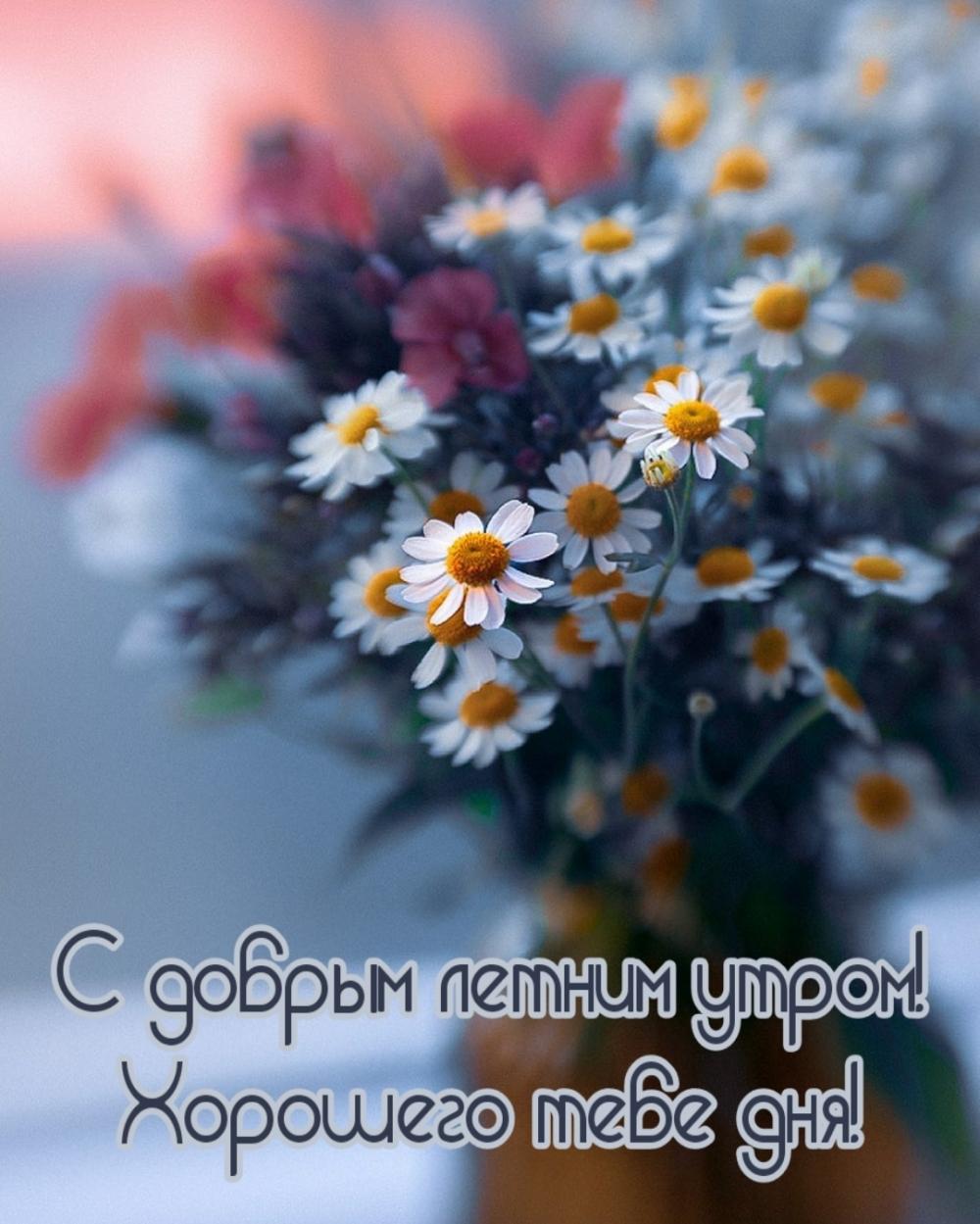 С добрым летним утром! Хорошего тебе дня!