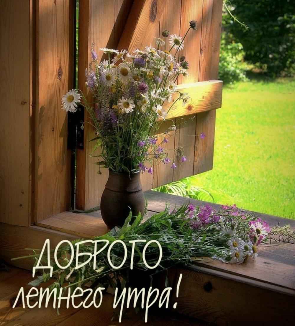 Доброго летнего утра!.
